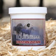 Equiderma Wound Ointment Calendula and Lanolin 16 oz - TB