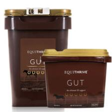 Equithrive Gut Pellets - TB
