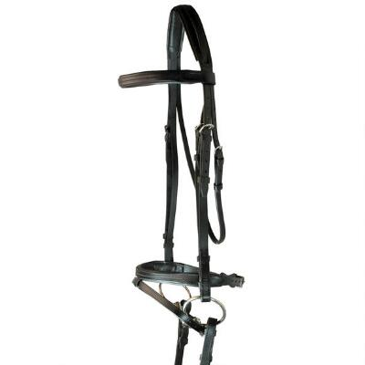 Raised Padded Dressage Bridle with Flash