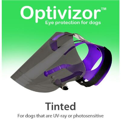 Tinted Optivizor Protects Your Dogs Eyes & Face