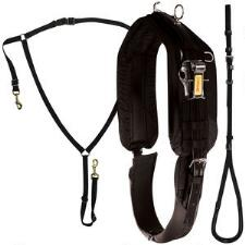 Zinger Race Harness Kit - TB