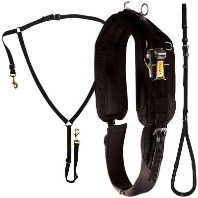 Zinger Race Harness Kit