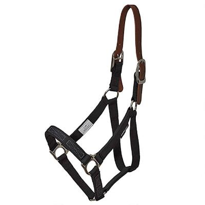 Flexible Filly Turnout Halter