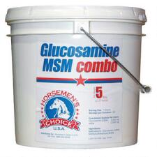 Glucosamine With Msm Combo 5 lb - TB