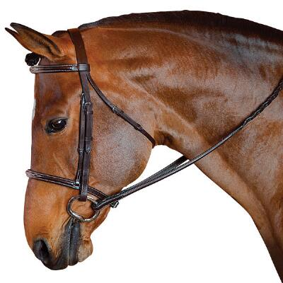 English Bridle Raised With Raised Reins