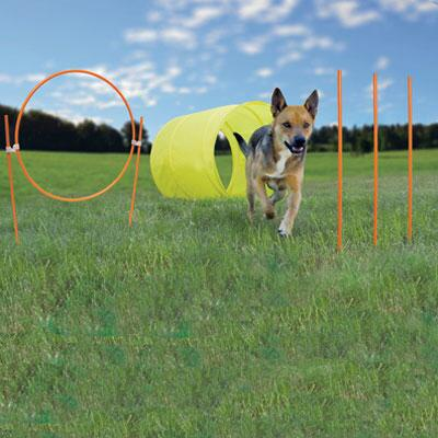 Outward Hound Zip and Zoom Agility Kit