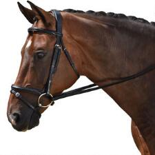 M Toulouse Quick-Change Caveson Dressage Bridle - TB