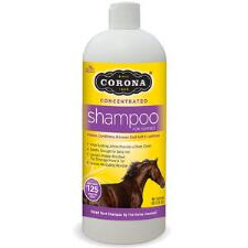 Corona Concentrated Shampoo 32 oz - TB