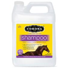 Corona Concentrated Shampoo 101 oz - TB