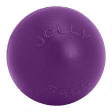 Horsemens Pride Push N Play  Ball 10 inch - TB