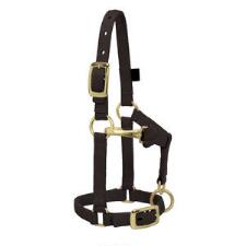Weaver Miniature Horse Adjustable Nylon Halter Large - TB