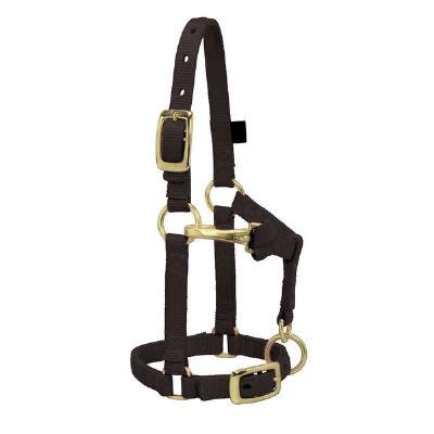 Miniature Horse Adjustable Nylon Halter Large