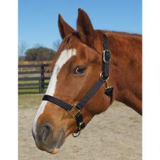 Weaver Nylon Halter Average Horse Size