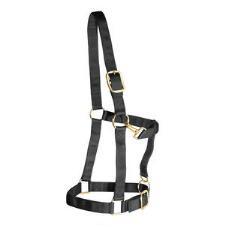 Weaver Draft Horse Halter Nylon - Large Draft - TB