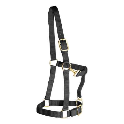 Weaver Draft Horse Halter Nylon - Large Draft