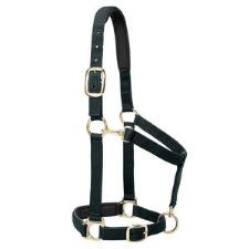 Weaver Padded Adjustable Nylon Halter - TB