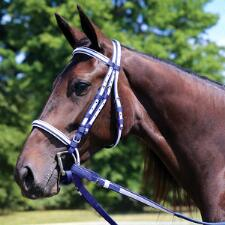 Thoroughbred Bridle Two Tone with Buckle End Reins
