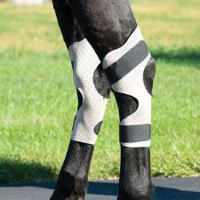CoolAid Equine Icing and Cooling Hock Wraps - TB