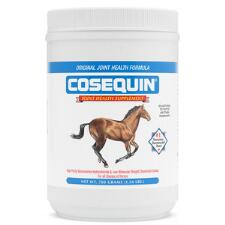 Cosequin Powder 700 gm - TB