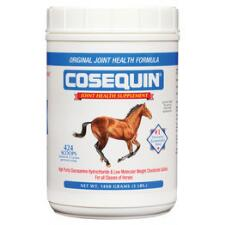 Cosequin Powder 1400 gm - TB