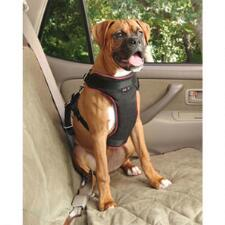 Vehicle Safety Harness For Dog - TB