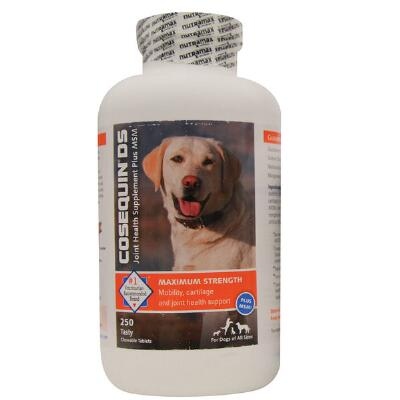 Cosequin DS Chews Plus MSM 250 Count