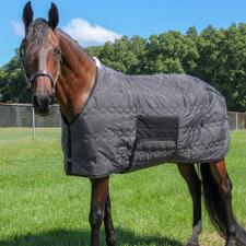 420D Diamond Quilt Mid Weight Bellyband Stable Blanket
