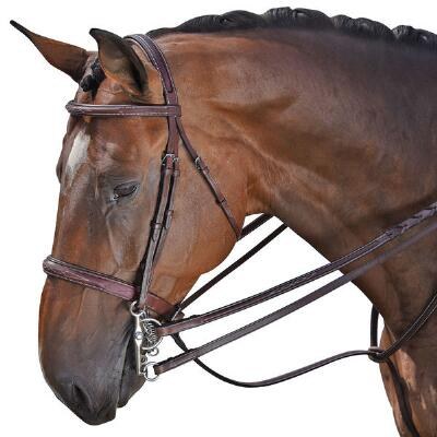 Devon Fancy Stitched English Bridle