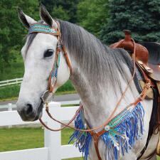 Big Country Tack Azure Collection