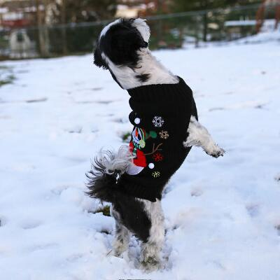 Dog Snowman Holiday Sweater
