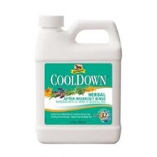 Absorbine Cooldown  Herbal After Workout Rinse 32 oz - TB