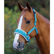 Shires Fleece Lined Lunging Caveson - TB