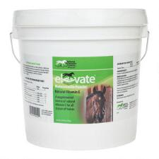 Elevate Vitamin E Powder 10 lb - TB