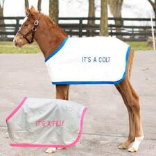 Jacks Colt and Filly Horse Blankets - TB