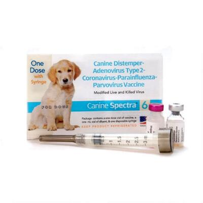 Canine Spectra 6 with Syringe