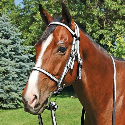 Race Bridle Thoroughbred 2 Tone