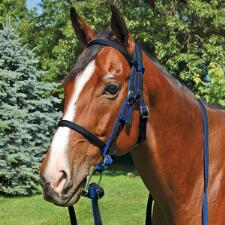 Jacks Race Bridle Thoroughbred 2 Tone - Complete - TB