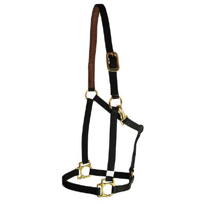 Halter Nylon .75 Inch With Suede Lined Crown