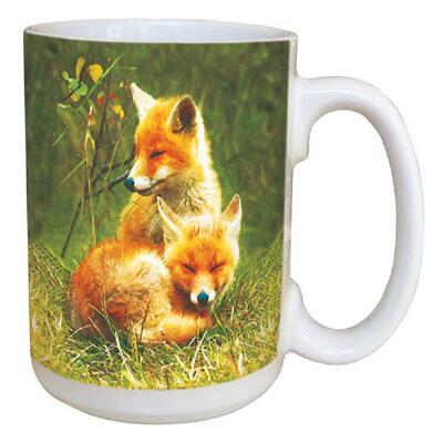 Foxes Favorite Coffee Mug