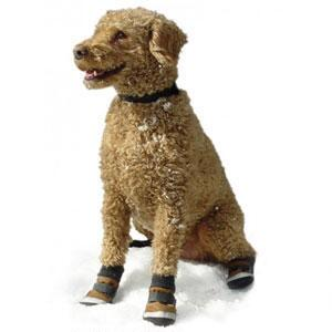 Centaur Xtreme All Weather Dog Boots