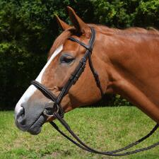Ovation Fancy Stitched Comfort Crown English Bridle - TB