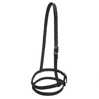 Flash Noseband Thoroughbred Nylon