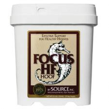Source Focus Hf 3.5 lb - TB