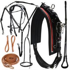 Walsh 500 Leather Harness
