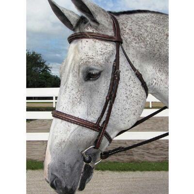 HDR English Bridle Pro Stress Free Fancy Stitch Padded