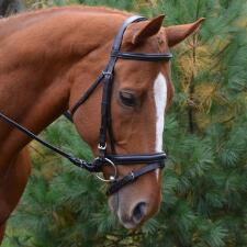 Red Barn Centerline Weymouth Bridle Cob - TB