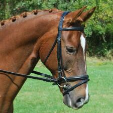 Red Barn Levade Padded Dressage Bridle with Flash - TB