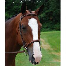 KL Select Red Barn Icon Square Padded Fancy Stitched English Bridle - TB