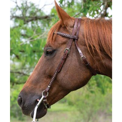 Circle Y Classic Spots Browband Headstall
