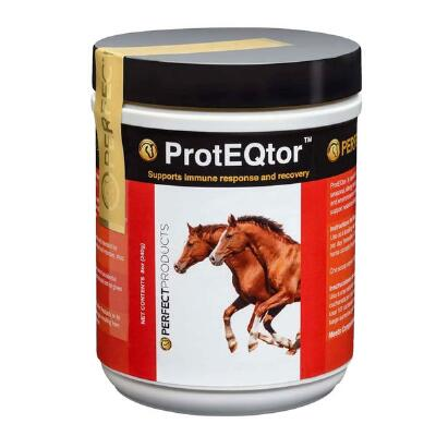 Perfect Products ProtEQtor Immune Support Daily Powder 8oz